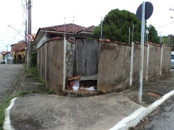 Caramelo Focinho Preto: Uma mãe e seis filhos numa esquina qualquer da vida!