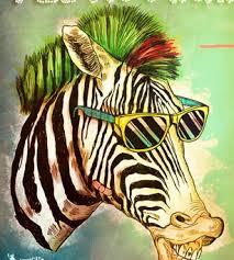 Maracutaia Zebra
