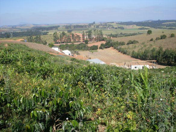 A Apac-Pouso Alegre está instalada numa área de 6 alqueires às margens da MG 290